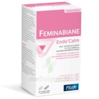 Pileje Feminabiane Endo'calm Comprimés + Gélules B/60+30 à Libourne