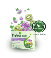 Phytoxil Transit Comprimés B/20 à Libourne