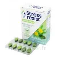Stress Resist Comprimés Stress & Fatigue B/30 à Libourne