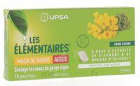 Les Elémentaires Sans Sucre Pastilles Maux De Gorge Aigus Menthe B/20 à Libourne