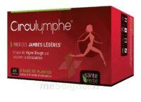 Santé Verte Circulymphe Triple Actions B/30 à Libourne