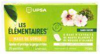 Les Elémentaires Sans Sucre Pastilles Maux De Gorge Pomme Verte B/20 à Libourne